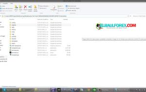 Instalar Plantillas y Indicadores Metatrader 4 Build 646 (Actualización)